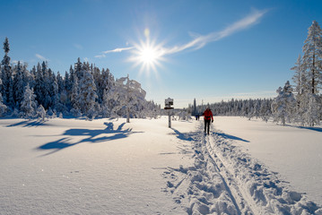 Woman in skislopes, winter in Norway