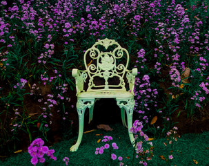 white beautiful chair with blooming purple flowers at the background