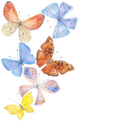 Background with hand drawn watercolor butterflies. Sketch illustration with space for text, invitation or greeting card.