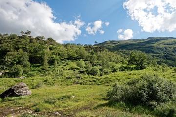 Schottland - Glen Nevis - Paddy's Bridge Trail