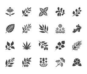 Medical herbs flat glyph icons. Medicinal plants echinacea, melissa, eucalyptus, goji berry, basil, ginger root, thyme chamomile. Signs for herbal medicine. Solid silhouette pixel perfect 64x64