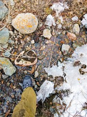 Feet trekking boots hiking Traveler alone.