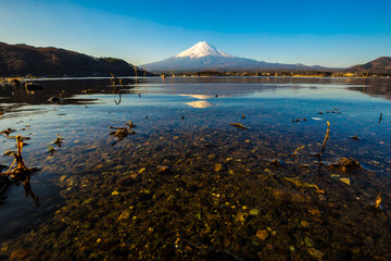 Fuji mountain and lake Kawaguchigo morning reflection nature landscape