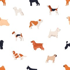 Seamless pattern with dogs of various breeds on white background. Backdrop with cute purebred pet animals of different types. Flat cartoon vector illustration for wrapping paper, textile print.