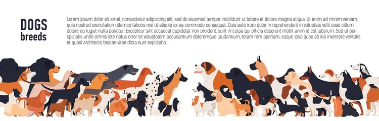 Background with place for text and different thoroughbred dogs. horizontal orientation banner, flyer, header for site.