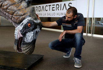 Argentine paleontologist Pablo Gallina poses next to a replica of the skeleton of a newly identified dinosaur Bajadasaurus pronuspinax in Buenos Aires
