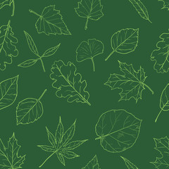 Vector Seamless Pattern with Sketch Leaves on Green Background