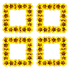 Beautiful floral pattern of yellow marigolds