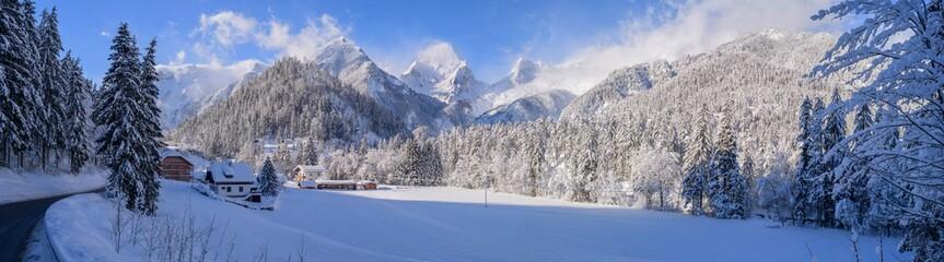 Forest in Hinterstoder, Upper Austria, Winter, Snow