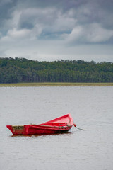 red boat and forest