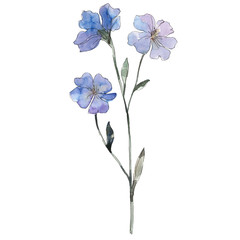 Purple flax floral botanical flower. Watercolor background set. Isolated flax illustration element.