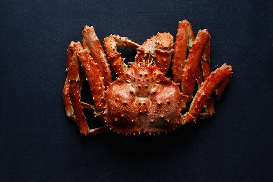 Big whole alaskan crab on dark concrete background
