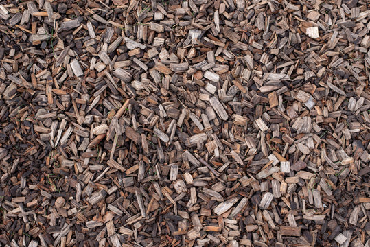 wooden bark chips background texture