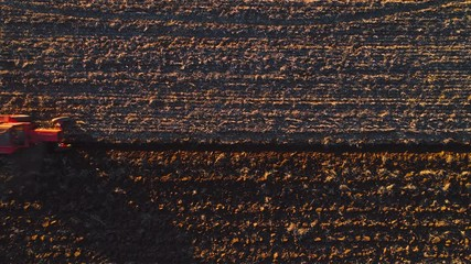 Wall Mural -  Aerial view over harvest fields with cultivating tractor. Farmer plowing stubble field.