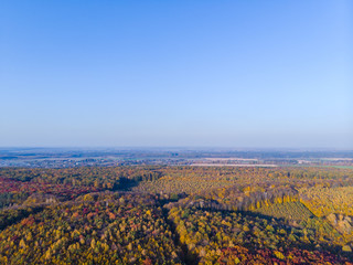 Aerial view of autumn colored forest. Drone shot bird eye. Natural view over the forest. green and yellow, treetops at sunset, copy space, global warming, reserve, home for animals, habitat