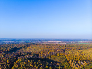 Aerial view of autumn colored forest. Drone shot bird eye. Natural view over the forest. green and yellow, treetops at sunset, copy space