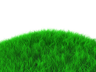 3d grass object isolated on white background