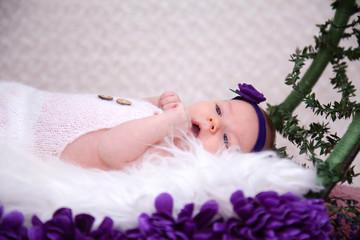 Concept newborn photos
