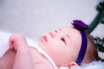 Concept newborn photos