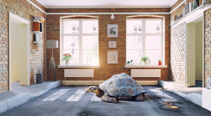 the asphalt road cross the living room  and  the turtle..