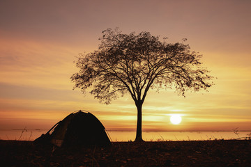 Camping under the trees by the sea with sunset