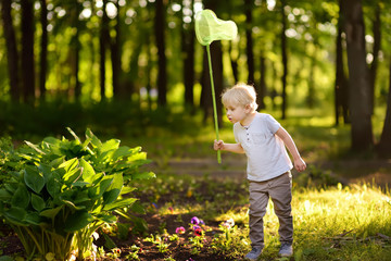 Cute little boy catches butterflies with scoop-net on sunny meadow.Study of nature. Young naturalist.