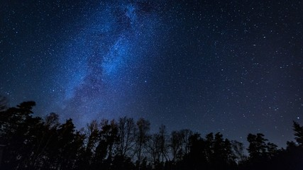 Beautiful night sky with Milky Way over forest.