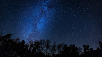 Beautiful night sky with Milky Way over forest. Fototapete