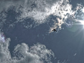 Blue sky with clouds and a swallow