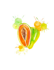 Watercolor illustration of papaya Whole and slice with splashis isolated on white background. Hand painted on paper