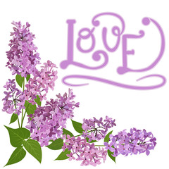bouquet of pink lilac and word love