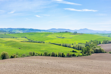 Italian rural landscape with new sown field
