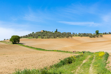 Hikers on a trail in a Tuscan rural landscape