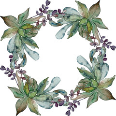 Jungle botanical succulent. Watercolor background illustration set. Frame border ornament square.