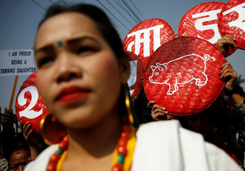 A picture of a pig is seen during the parade to mark Sonam Lhosar in Kathmandu