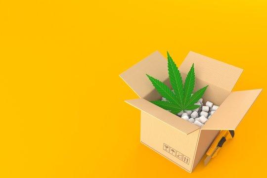Cannabis leaf inside package