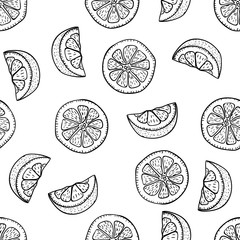 Hand drawing lemon slices in doodle style on white background. Lemon seamless pattern doodle drawing. Ripe garden fruits. Fruit doodle pattern.