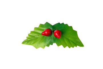 Holly leaves and berries isolated