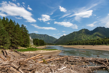 Coast of the mountain rivers Katun during high water in Altai, Russia