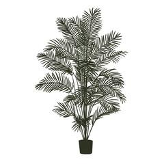 Hand drawn vector room plant