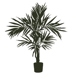 Hand drawn vector room plant