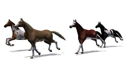 Horses - running herd with shadow on the floor - isolated on white background