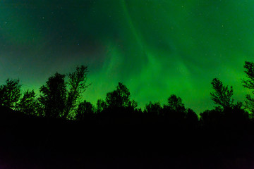 Northern lights at night over the hills.Aurora over the trees.