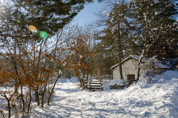Winter landscape with a wooden hut