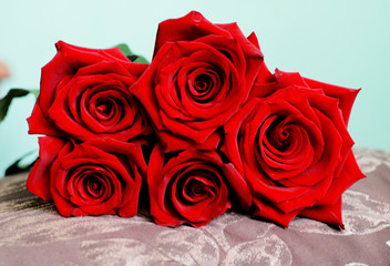 Bunch of Dark Red Roses on Pillow. Close Up View.