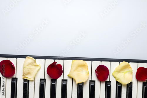 Piano keys with red and white rose flower petals, isolated