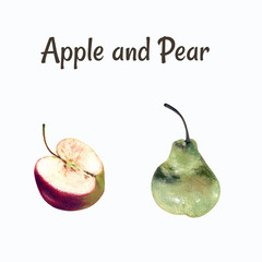 Apple and pear hand draw illustration on white background. Pastel drawing