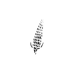 corn vector draw