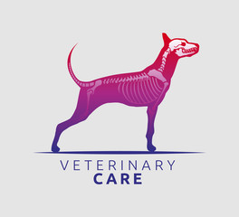 Veterinary Care Emblem Design, Bone Scan Dog Care vector illustration
