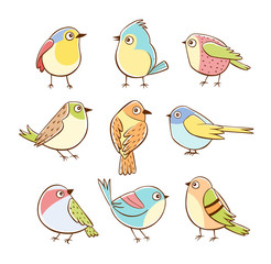 Collection of cute little birds in different poses. Colorful birds isolated on white background. Hand drawn vector illustration.